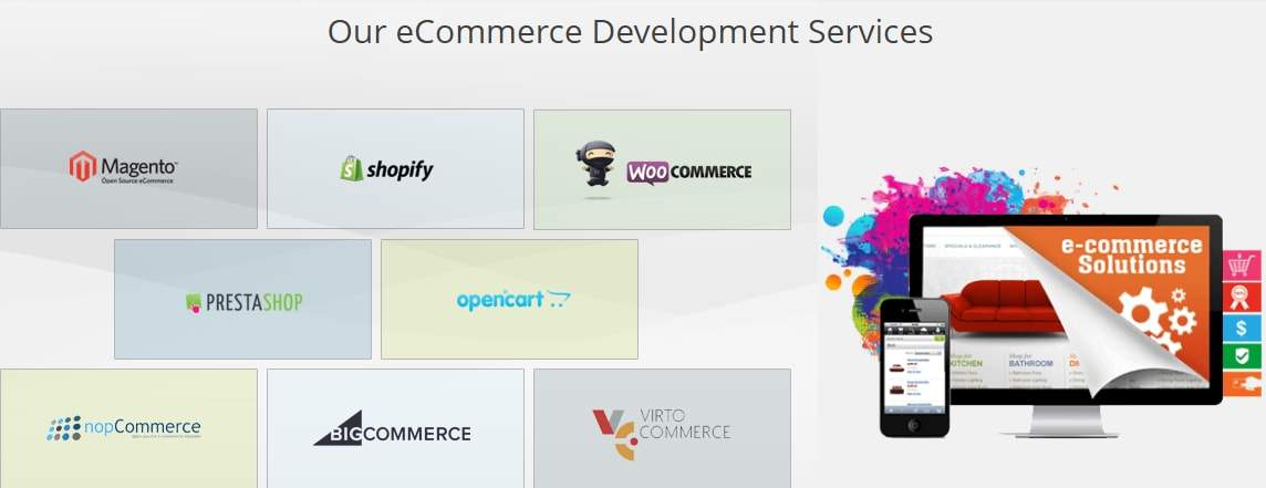ecommerce web development company delhi